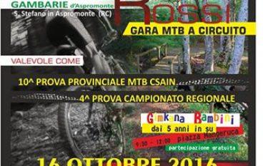 Ciclismo, a Gambarie in scena la XC dei Terreni Rossi