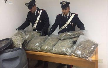 Curinga, sequestrati circa 30 kg di droga