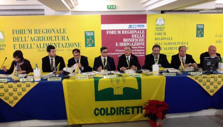 Amantea, partito il XII Forum della Coldiretti Calabria