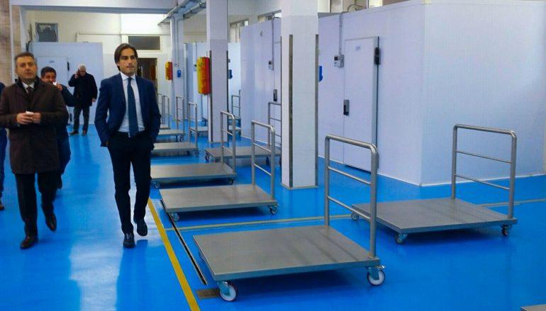 Reggio Calabria, ultimati i lavori per il nuovo mercato ittico