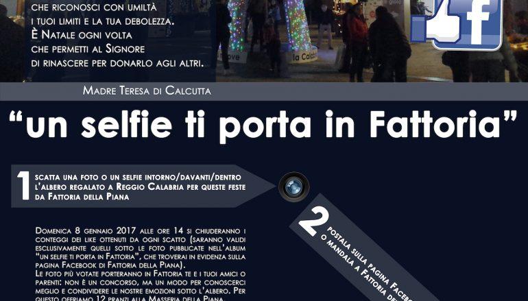 Reggio Calabria, ricco calendario di eventi attorno all'Albero di luci