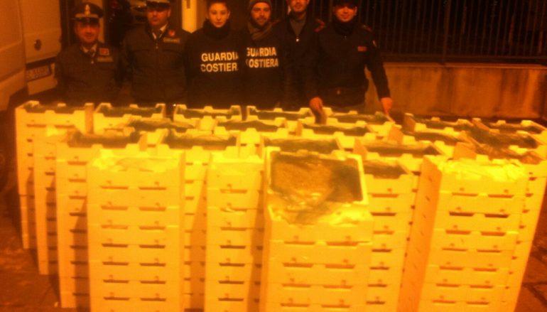 """""""Focus 'ndrangheta"""", bloccato furgone con a bordo prodotto ittico illecito"""