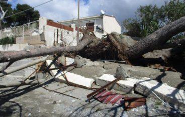 """Crollano strutture sulla spiaggia di Bocale, Crea: """"Tragedia sfiorata"""""""