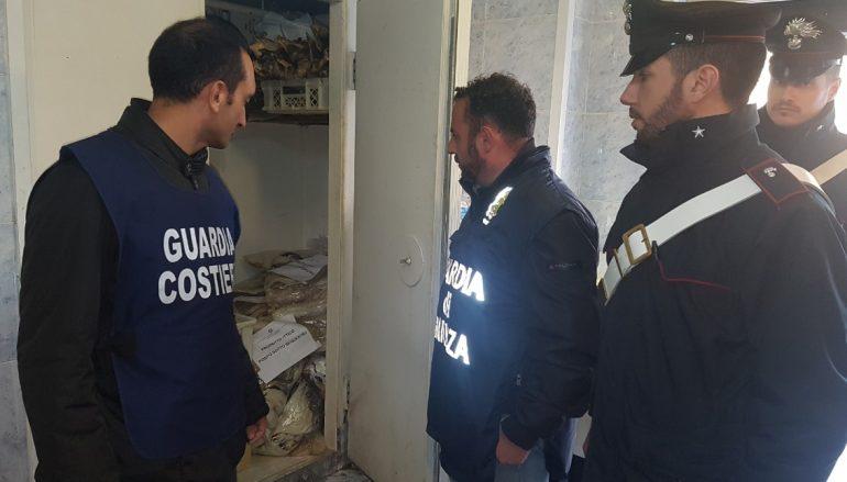 Focus 'Ndrangheta, controlli sulla filiera della pesca: denunce e sequestri