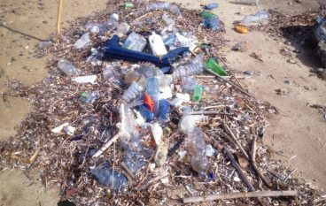"""Arpacal: """"E' quella tirrenica la costa con maggiore presenza di rifiuti"""""""