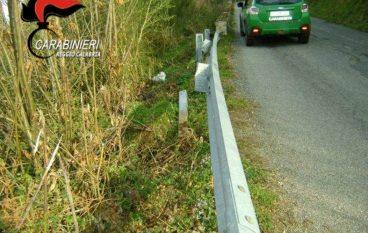 Sant'Eufemia, rubavano le traversine dei guard rail: denunciati due giovani