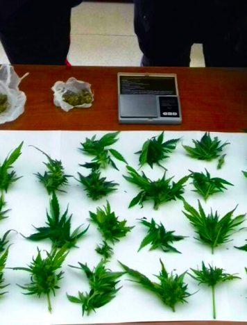 Reggio Calabria, aveva marijuana in casa: arrestato 27enne