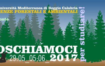 """Agraria UniRC: """"Imboscati per studiare"""" nel Parco dell'Aspromonte"""