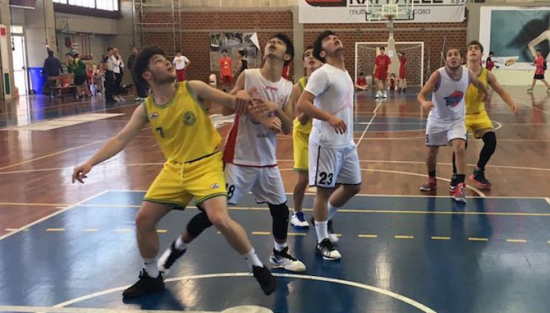Minibasket in Calabria: parla Tonino De Giorgio
