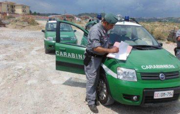 Catanzaro: gestione illecita di rifiuti speciali