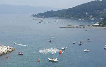 """Ottimi risultati in acque libere per gli """"Anzianotti"""" dello Scorpion Nuoto"""