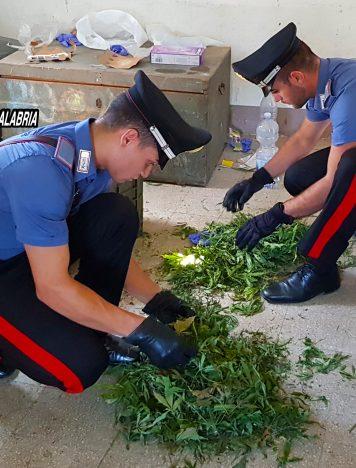Reggio Calabria, ritrovate armi, munizioni e marijuana