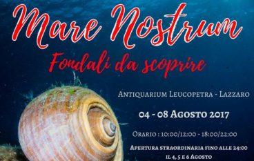 """Il """"Mare Nostrum"""" in mostra a Lazzaro"""