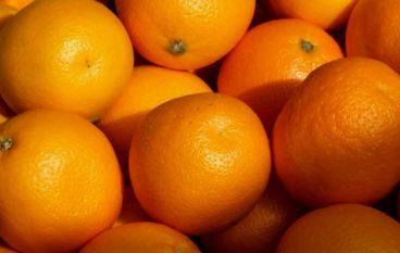 """Coldiretti: """"A Reggio la prima aranciata con il 22% di succo di arance calabresi"""""""