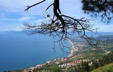 "Le fiabe ""Made in Calabria"" di Teresa Averta"