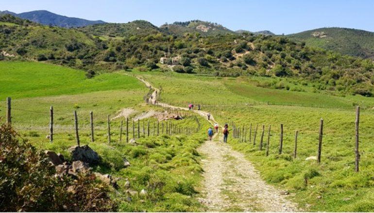 Crinali di Campoligo e tradizioni agropastorali di Staiti