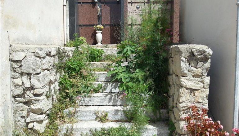 Situazione di degrado nel cimitero di Motta San Giovanni