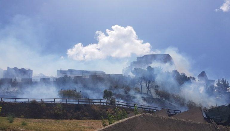 Incendio Roccella Jonica, distrutto parco vicino al Castello