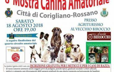 Mostra Canina a Corigliano Calabro