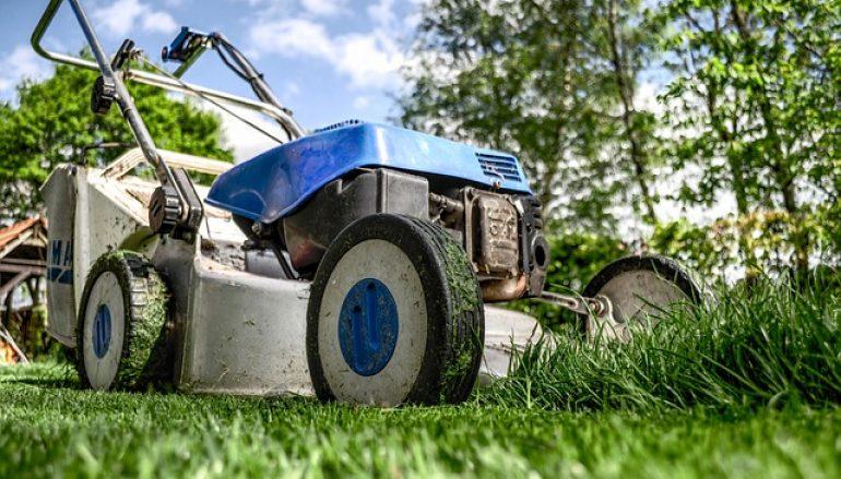 """L'erba del giardino va curata anche in inverno o si può lasciare a """"riposo""""?"""