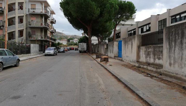 Scuole di Pellaro: eseguita manutenzione degli alberi