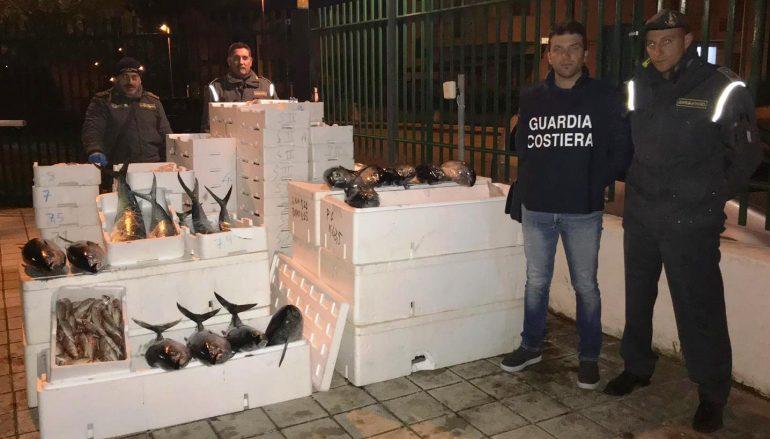 Maxi sequestro di prodotti ittici a Roseto Capo Spulico