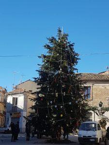 Addobbiamo l'albero insieme a Girifalco