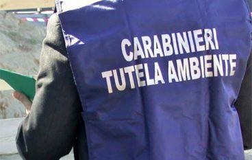 Veleni nelle acque, controlli anche in Calabria