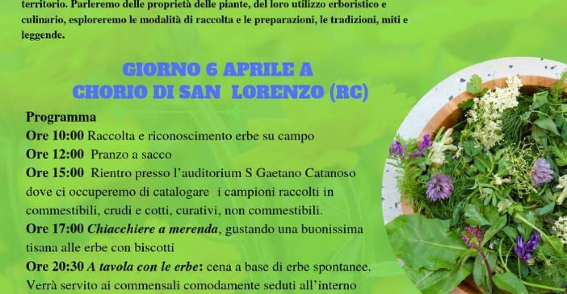 Riconoscere le erbe spontanee, corso a Chorio di S. Lorenzo