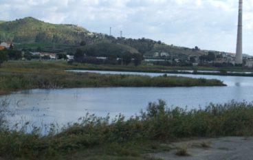 Pantano di Saline, la Città Metropolitana mira all'acquisto