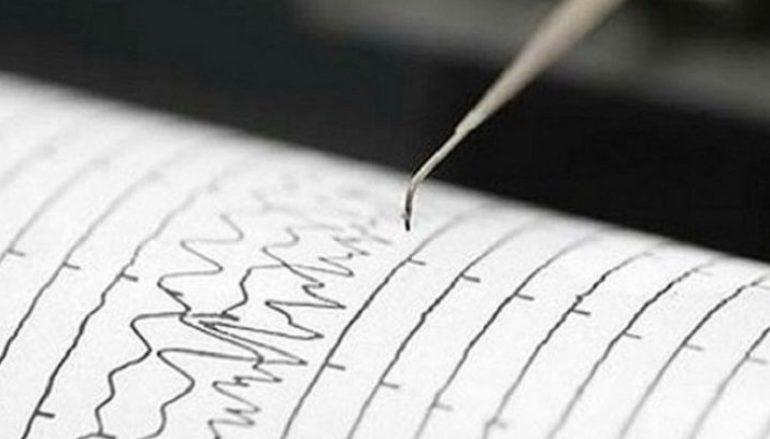 Terremoto nel Reggino, i particolari