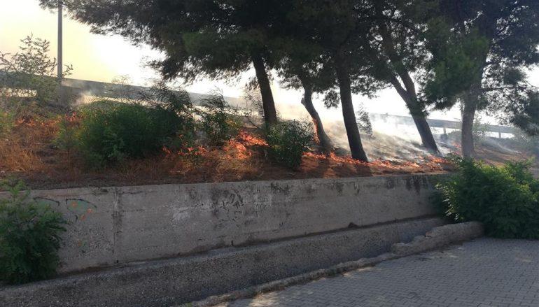 Incendio a Piazza Zagarella di Lazzaro, i particolari