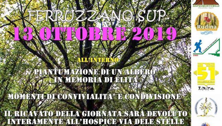Uniti per L'Ospice a Ferruzzano
