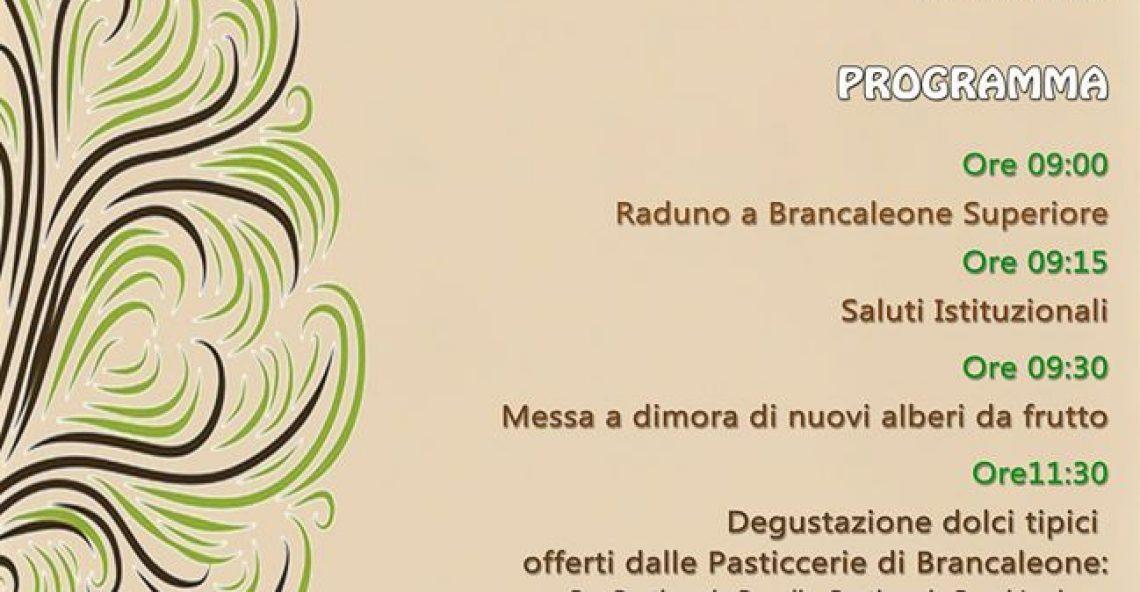 Brancaleone: al via la Festa Nazionale dell'albero
