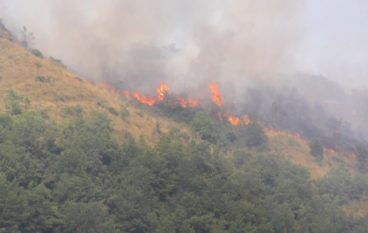 Incendi in Calabria, morto un 77enne vicino Grotteria (Rc)