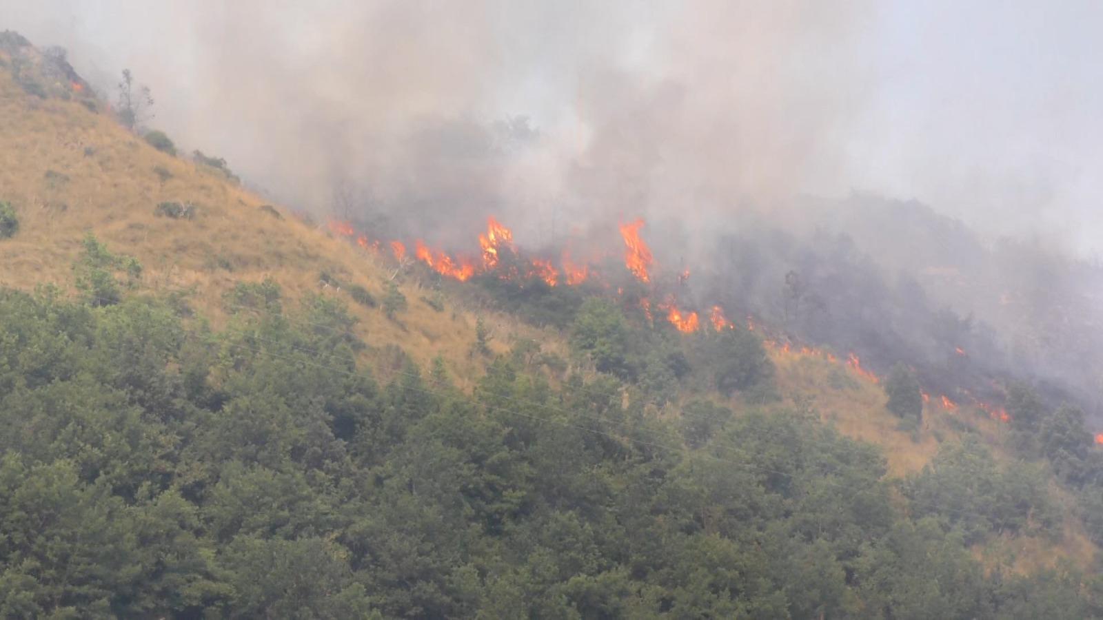 Incendi boschivi a Bova