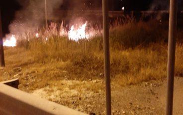 Incendio nei pressi di Archeoderi, condanna del sindaco di Bova Marina