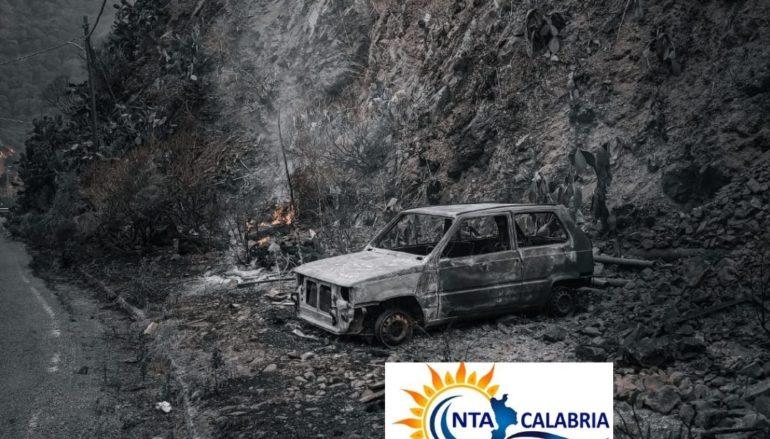 Vasto incendio nel reggino nelle frazioni di Trunca, Valanidi