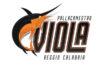 Pallacanestro Viola, aperta campagna abbonamenti 21/22. I prezzi